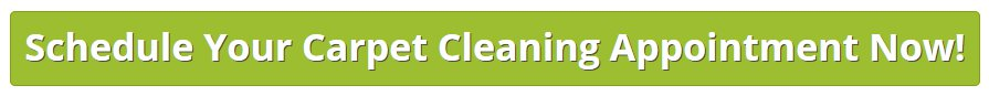 Schedule Carpet Cleaning with Widmers Carpet Cleaners